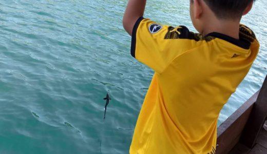 【プロが教える!タイ旅行ワンポイントアドバイス】  ⑥問い合わせ・予約も日本語でOK!バンコク近郊シーチャン島「陣田筏」で海釣りだ!