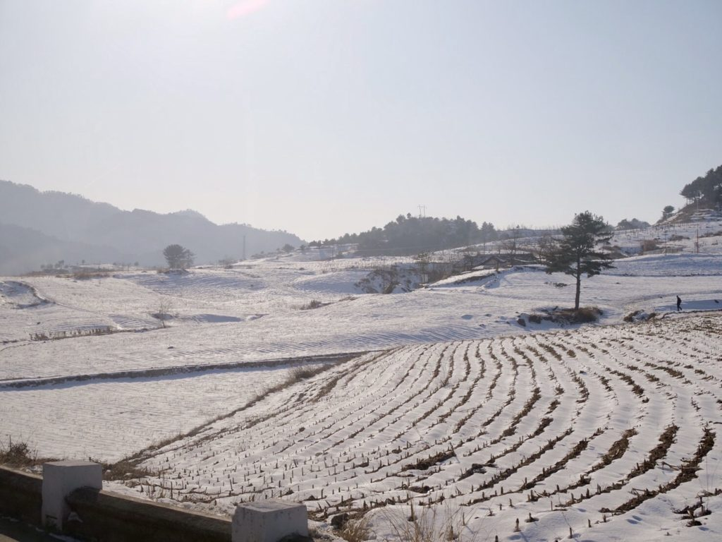 板門店に行く途中の雪景色