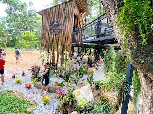 モンチャーンカフェ(Mongchang Cafe)の手入れされた植物