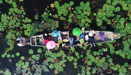 バンコク近郊の新名所・美しい蓮池でボート遊覧!上空からドローン撮影もしてくれる「レッドロータス水上市場」
