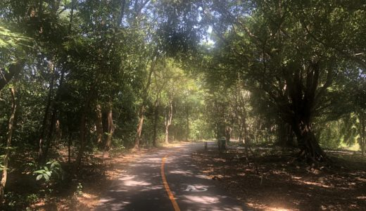バンコクの週末お出かけにオススメ バーンガジャオで自然とふれあいリフレッシュ